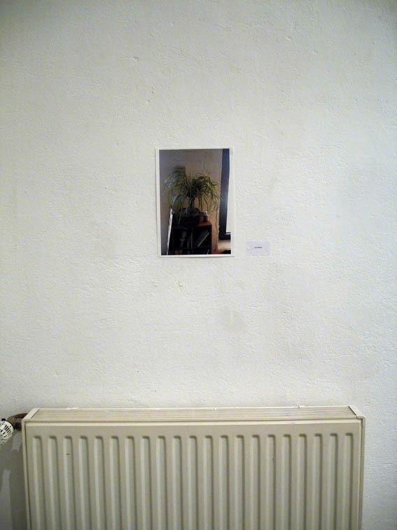 Tony Huang, 2005. As installed at 0047. Photo: Rakett