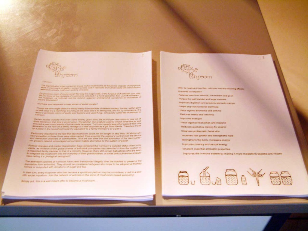 Handouts, information about T-shroom. Photo: Åse Løvgren